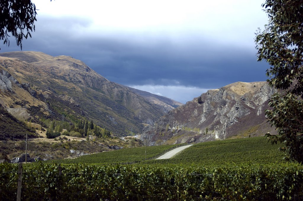 chard-farm-winery-view-down-valley