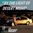 By the Light of Desert Night